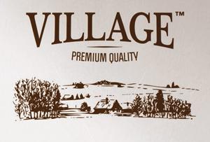 300_logo_vilage